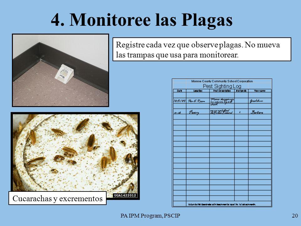 Mip para centros de cuidado de ni os m dulo 1 las plagas - Que hacer contra las cucarachas ...