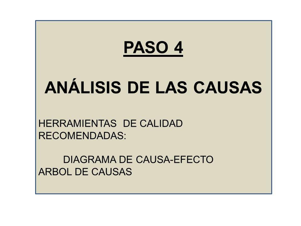 PASO 4 ANÁLISIS DE LAS CAUSAS