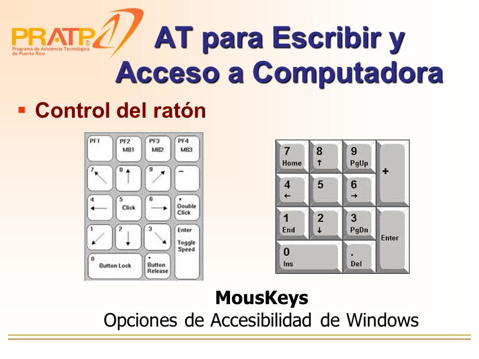AT para Escribir y Acceso a Computadora