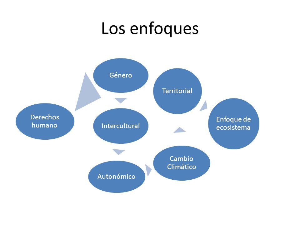 Los enfoques Género Territorial Enfoque de ecosistema Derechos humano
