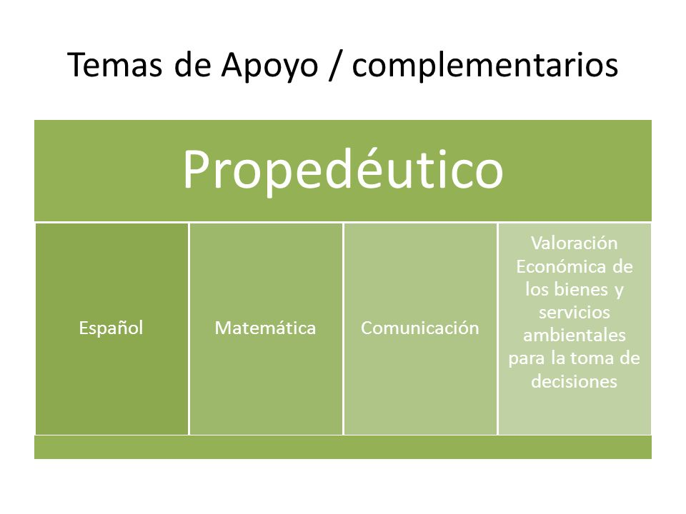Temas de Apoyo / complementarios