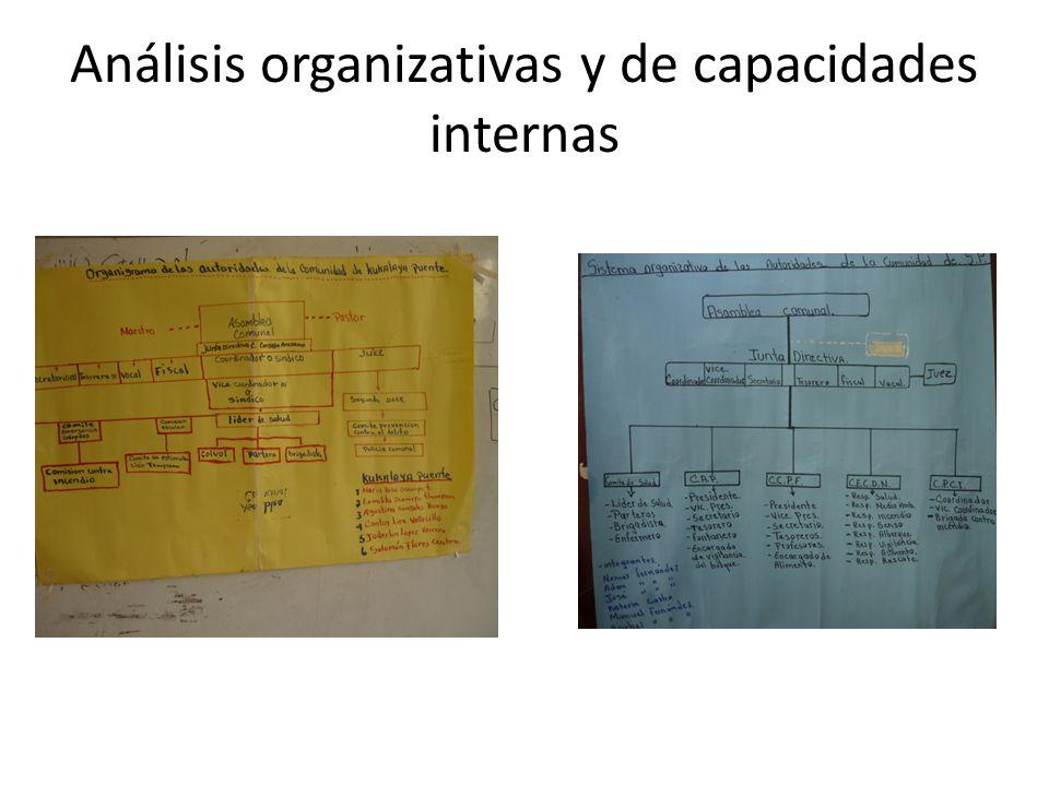 Análisis organizativas y de capacidades internas