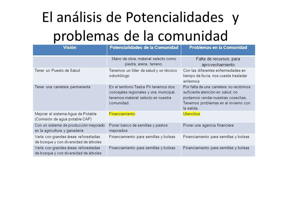 El análisis de Potencialidades y problemas de la comunidad
