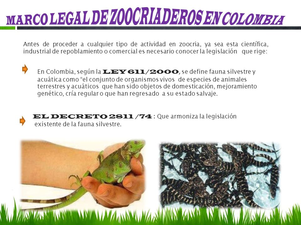 MARCO LEGAL DE ZOOCRIADEROS EN COLOMBIA