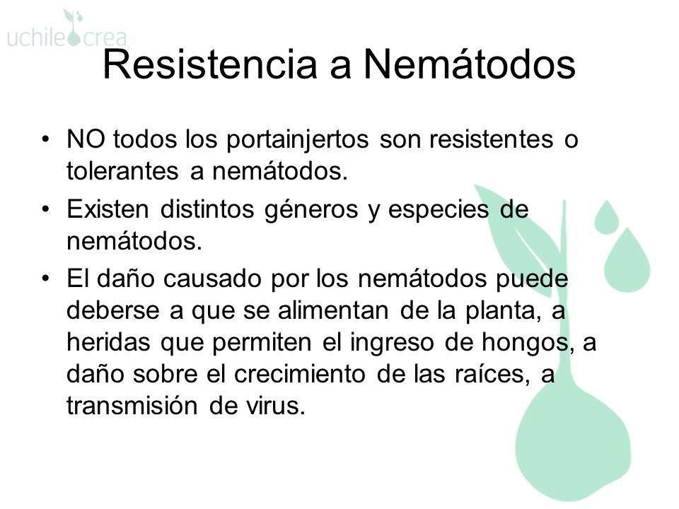 Resistencia a Nemátodos