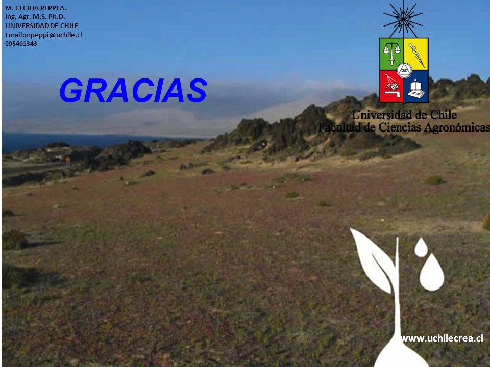 GRACIAS www.uchilecrea.cl M. CECILIA PEPPI A. Ing. Agr. M.S. Ph.D.