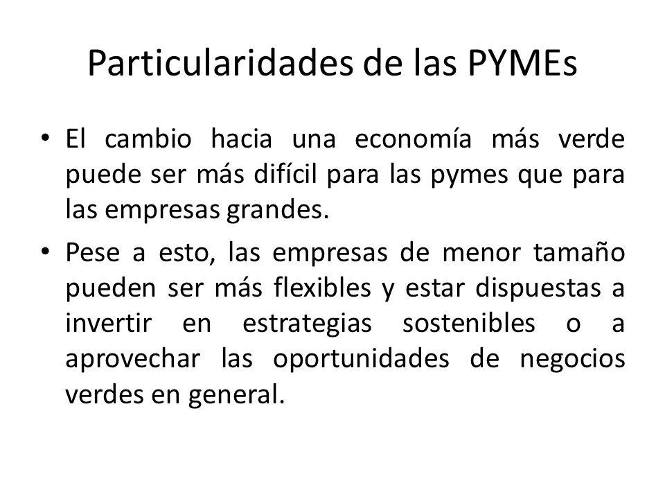 Particularidades de las PYMEs