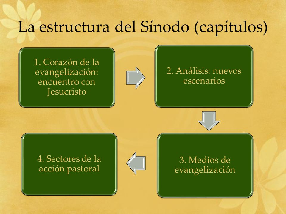 La estructura del Sínodo (capítulos)