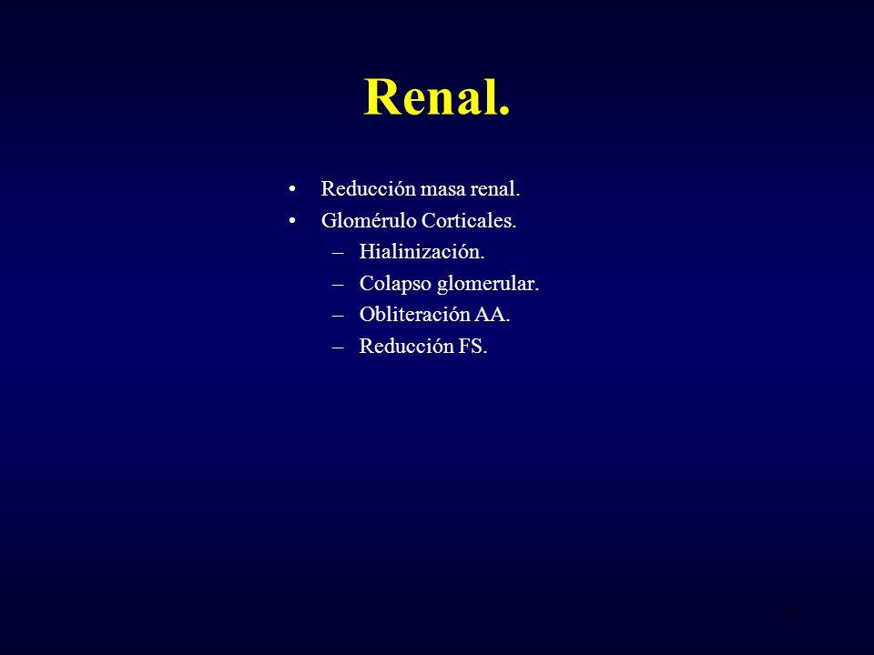 Renal. Reducción masa renal. Glomérulo Corticales. Hialinización.