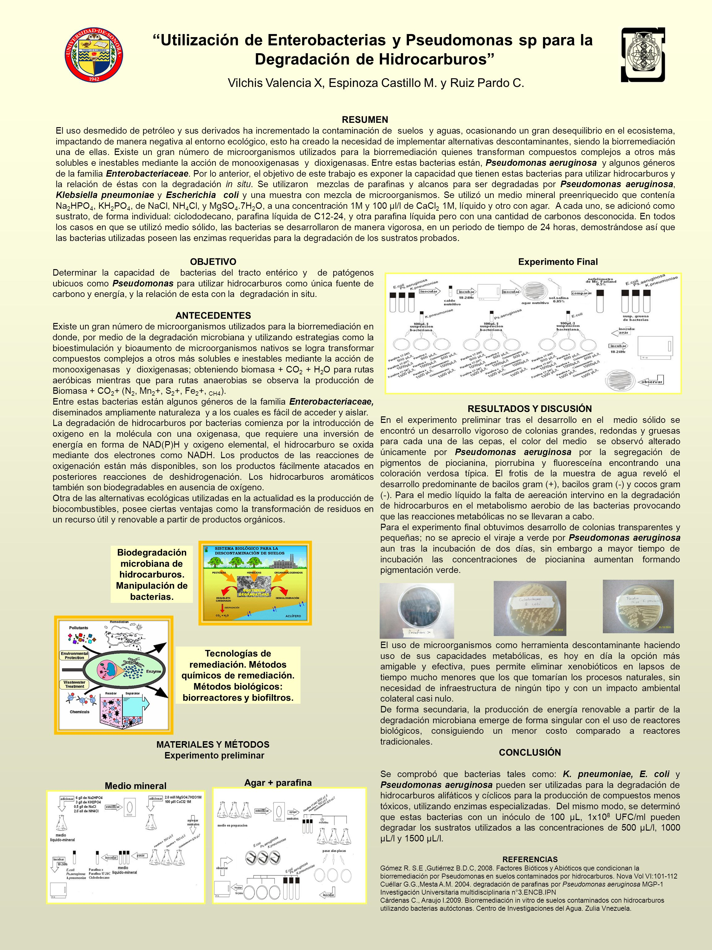 Utilización de Enterobacterias y Pseudomonas sp para la