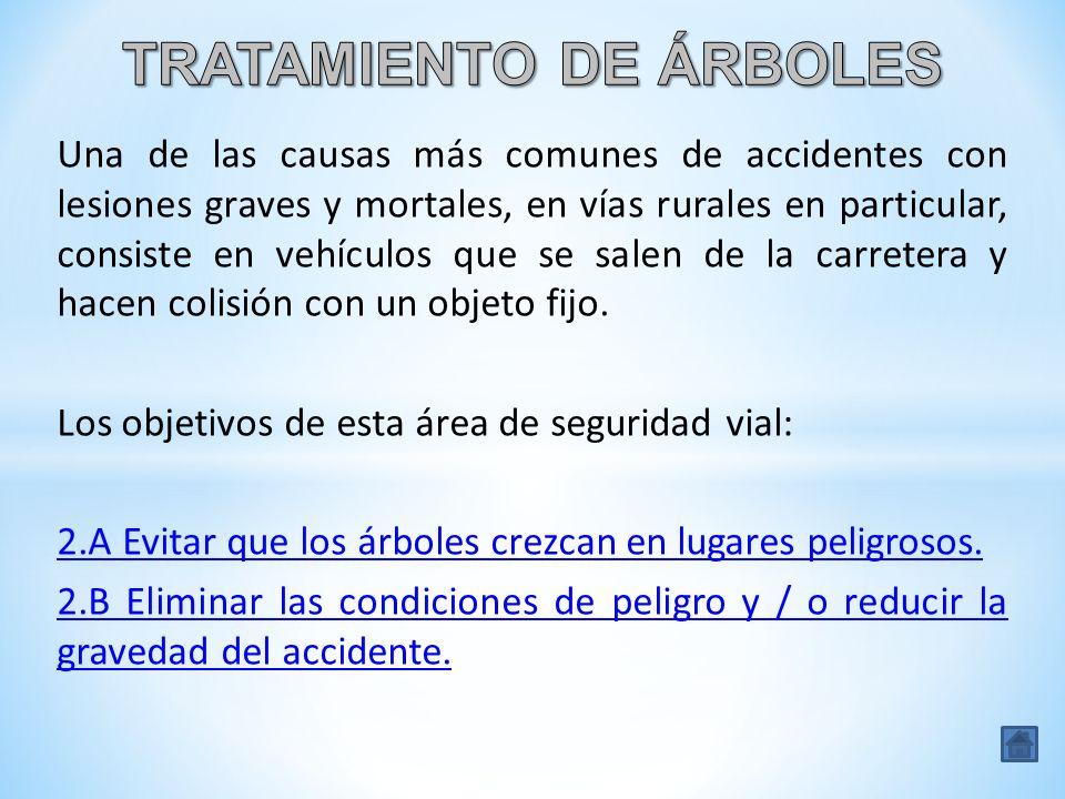 TRATAMIENTO DE ÁRBOLES