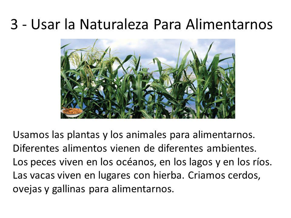 3 - Usar la Naturaleza Para Alimentarnos