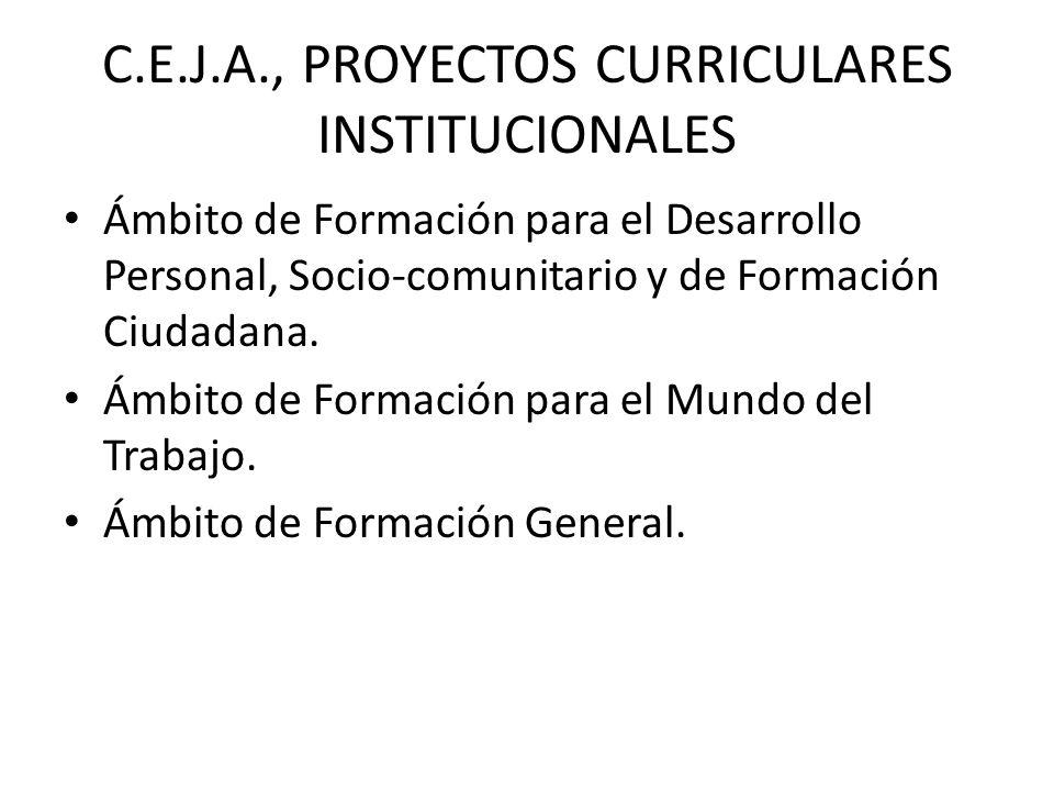 C.E.J.A., PROYECTOS CURRICULARES INSTITUCIONALES