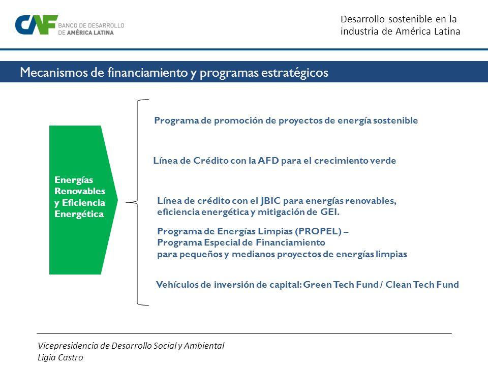 Mecanismos de financiamiento y programas estratégicos