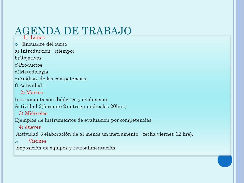 AGENDA DE TRABAJO 1) Lunes Encuadre del curso a) Introducción (tiempo)