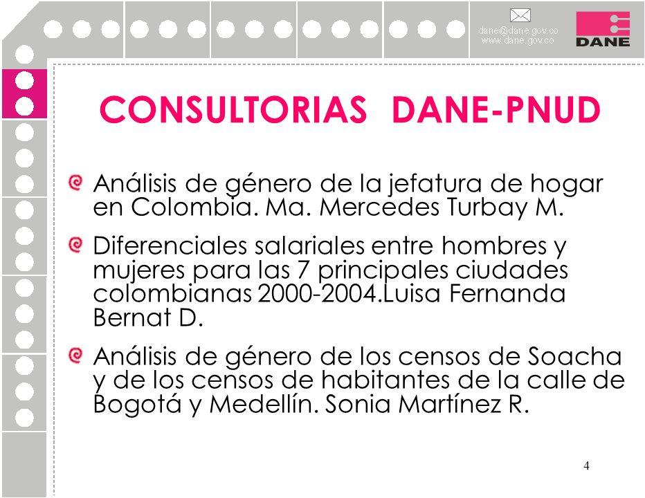 CONSULTORIAS DANE-PNUD
