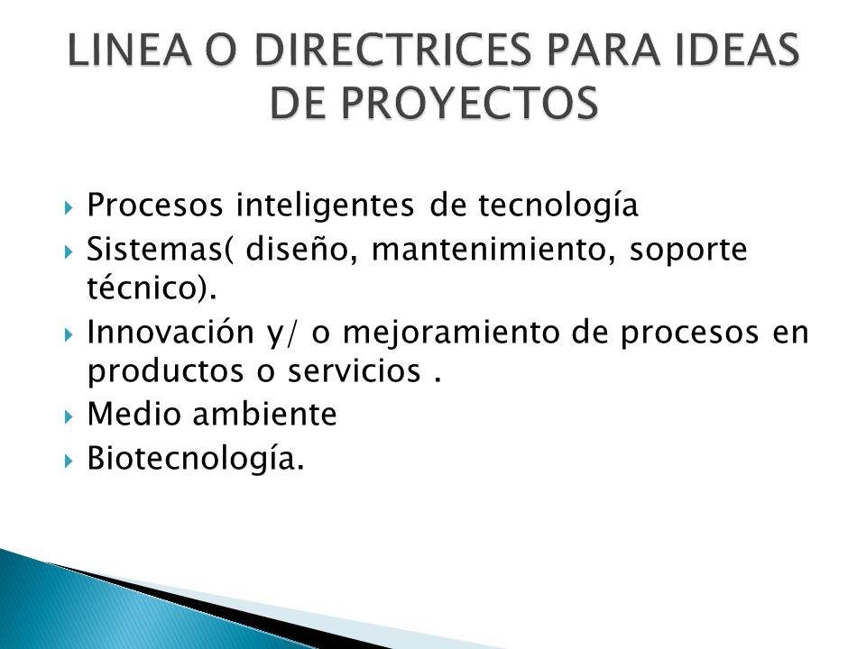 LINEA O DIRECTRICES PARA IDEAS DE PROYECTOS