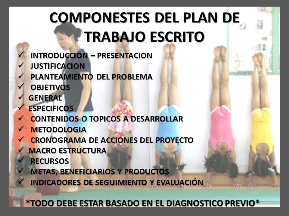 COMPONESTES DEL PLAN DE TRABAJO ESCRITO