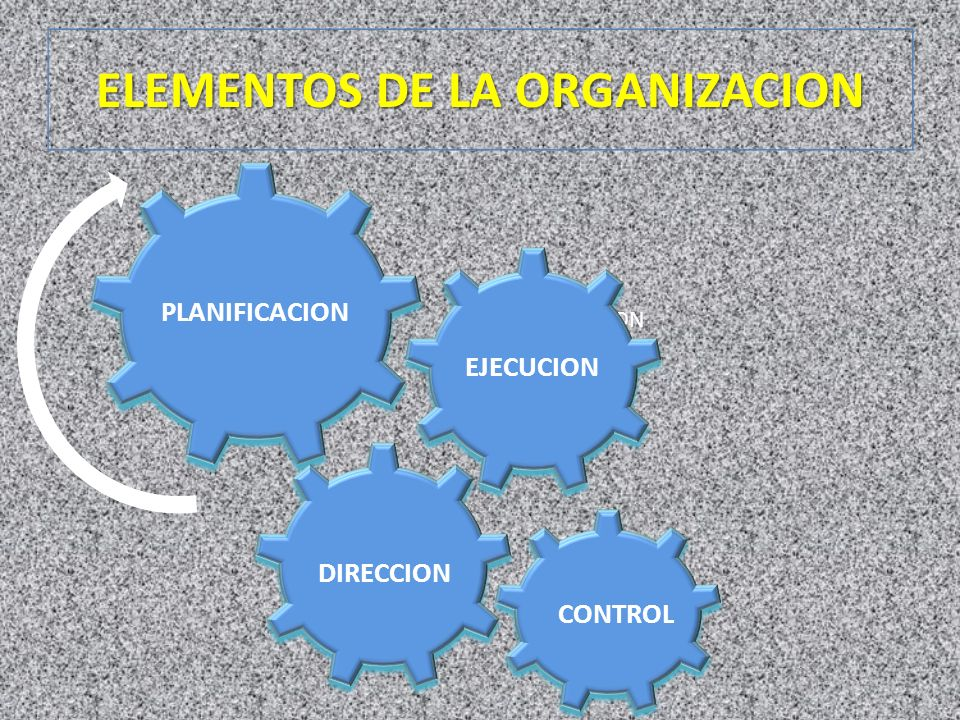 ELEMENTOS DE LA ORGANIZACION