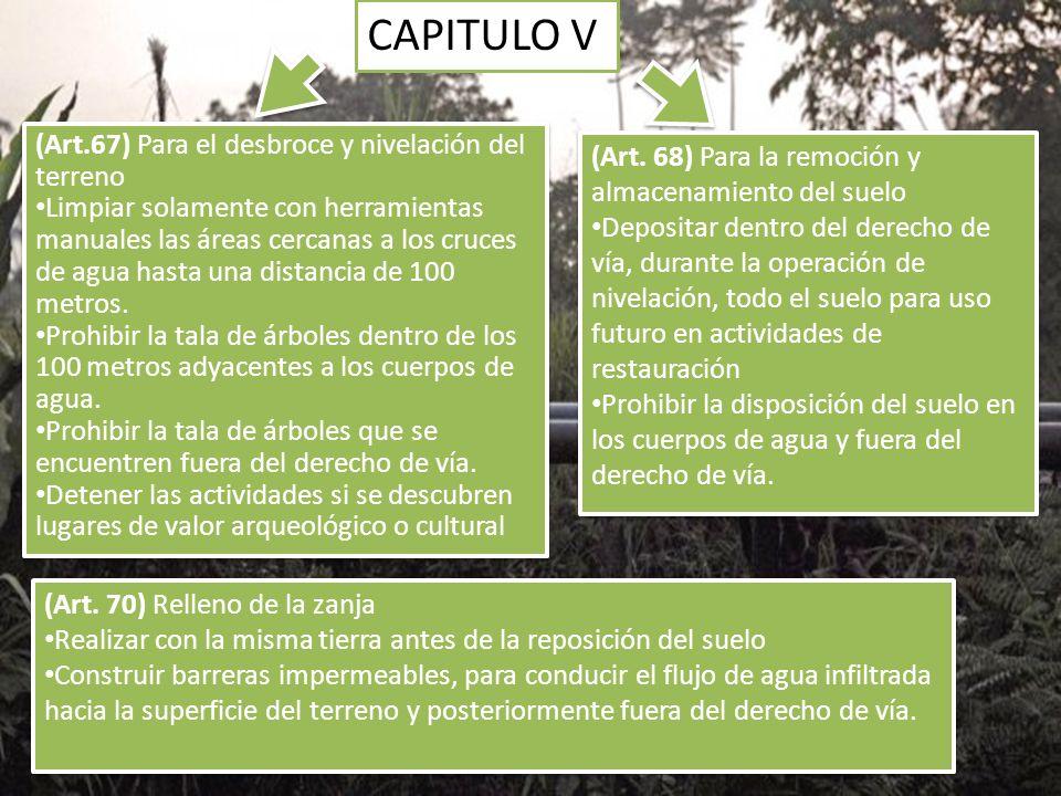CAPITULO V (Art.67) Para el desbroce y nivelación del terreno