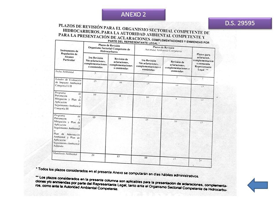 ANEXO 2 D.S. 29595