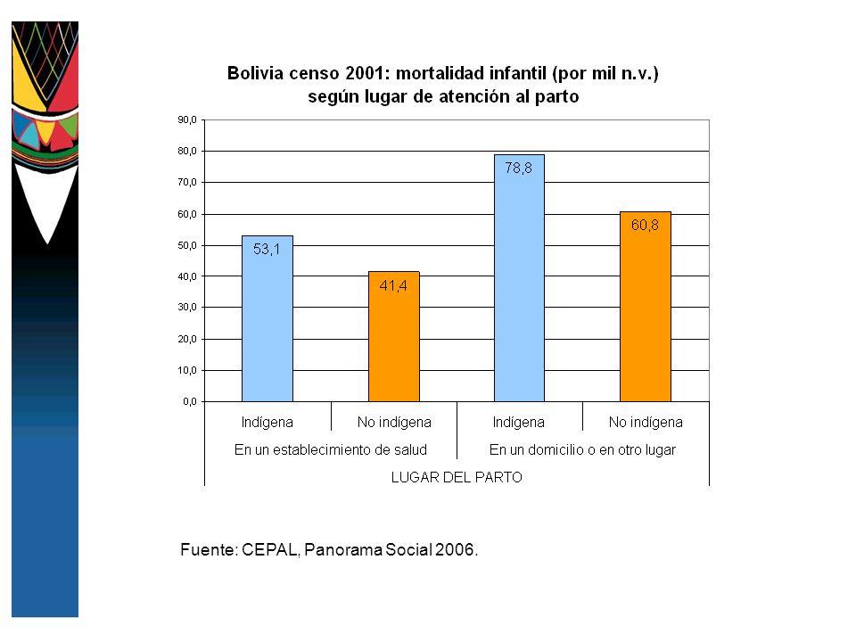 Fuente: CEPAL, Panorama Social 2006.