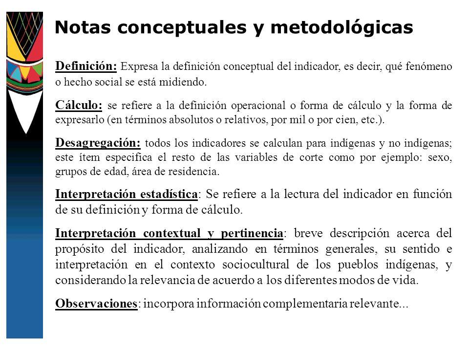 Notas conceptuales y metodológicas