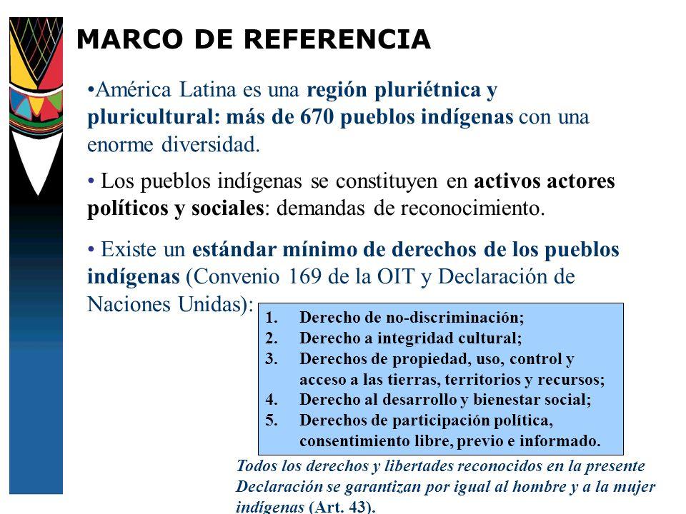 MARCO DE REFERENCIAAmérica Latina es una región pluriétnica y pluricultural: más de 670 pueblos indígenas con una enorme diversidad.