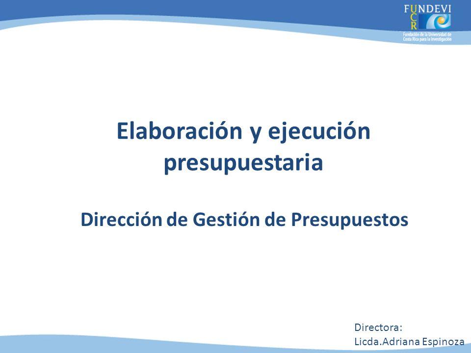Elaboración y ejecución presupuestaria