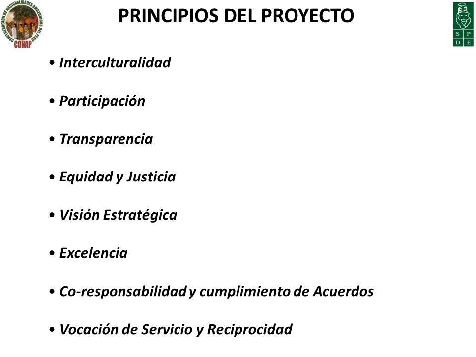 PRINCIPIOS DEL PROYECTO