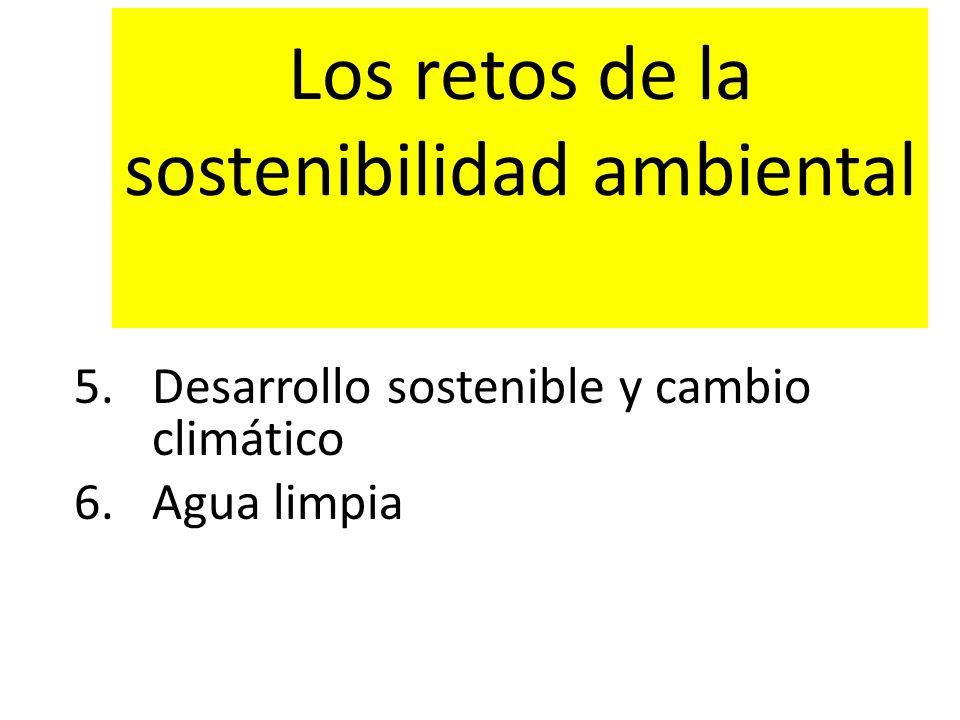 Los retos de la sostenibilidad ambiental
