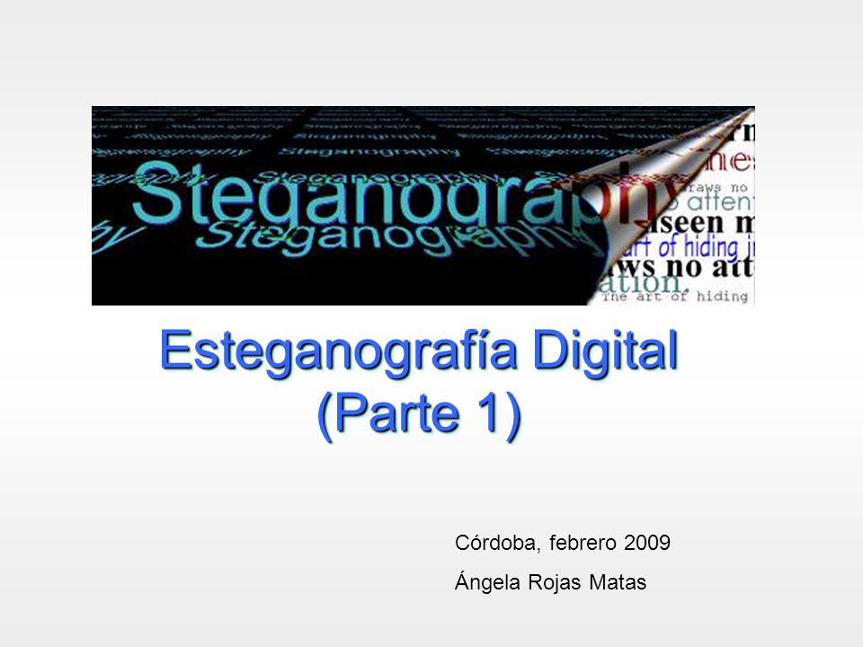 Esteganografía Digital (Parte 1)