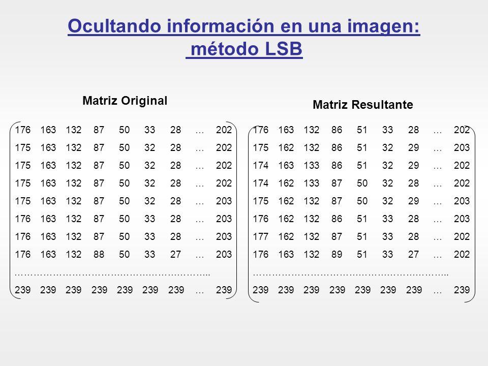 Ocultando información en una imagen: método LSB
