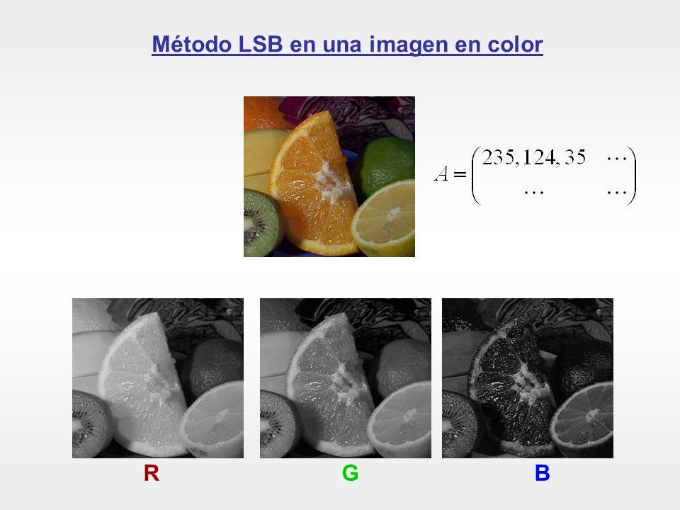 Método LSB en una imagen en color