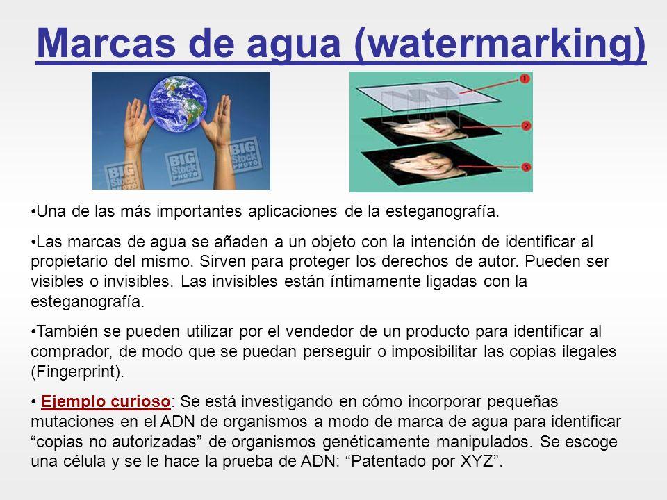 Marcas de agua (watermarking)