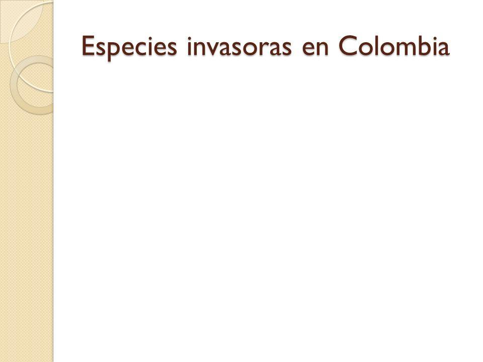 Especies invasoras en Colombia