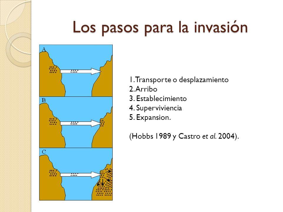 Los pasos para la invasión