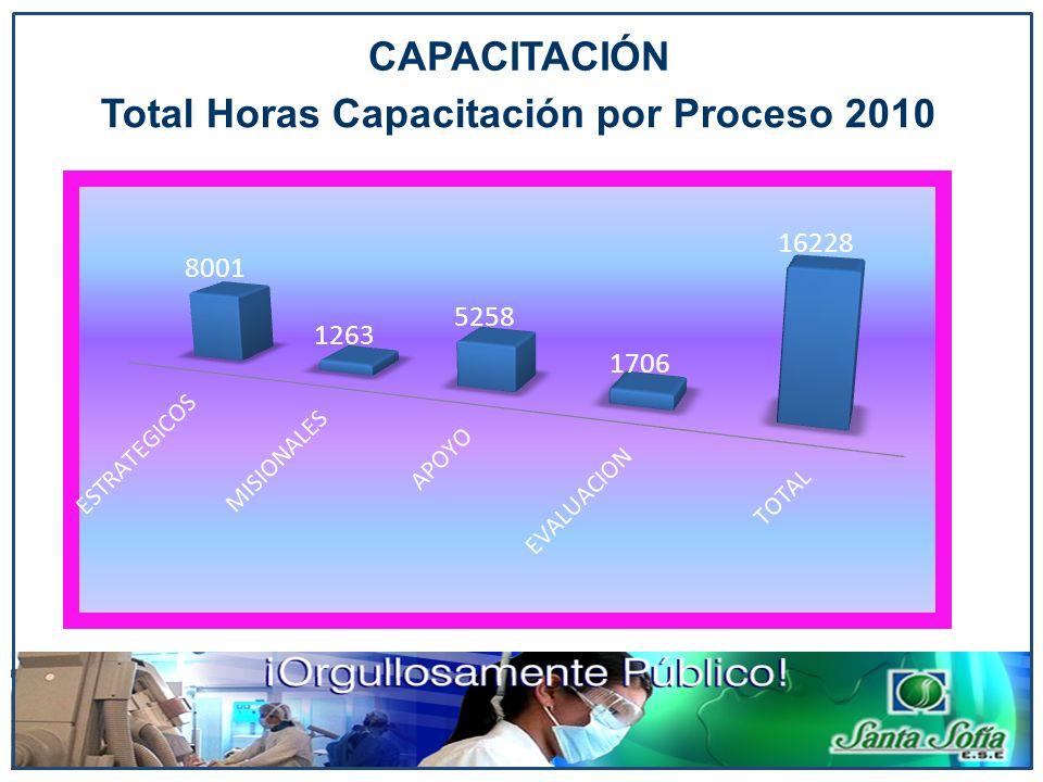 Total Horas Capacitación por Proceso 2010