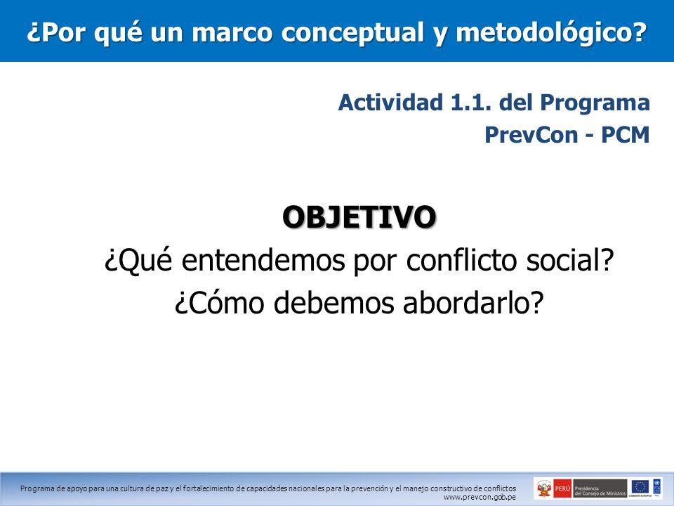 ¿Por qué un marco conceptual y metodológico
