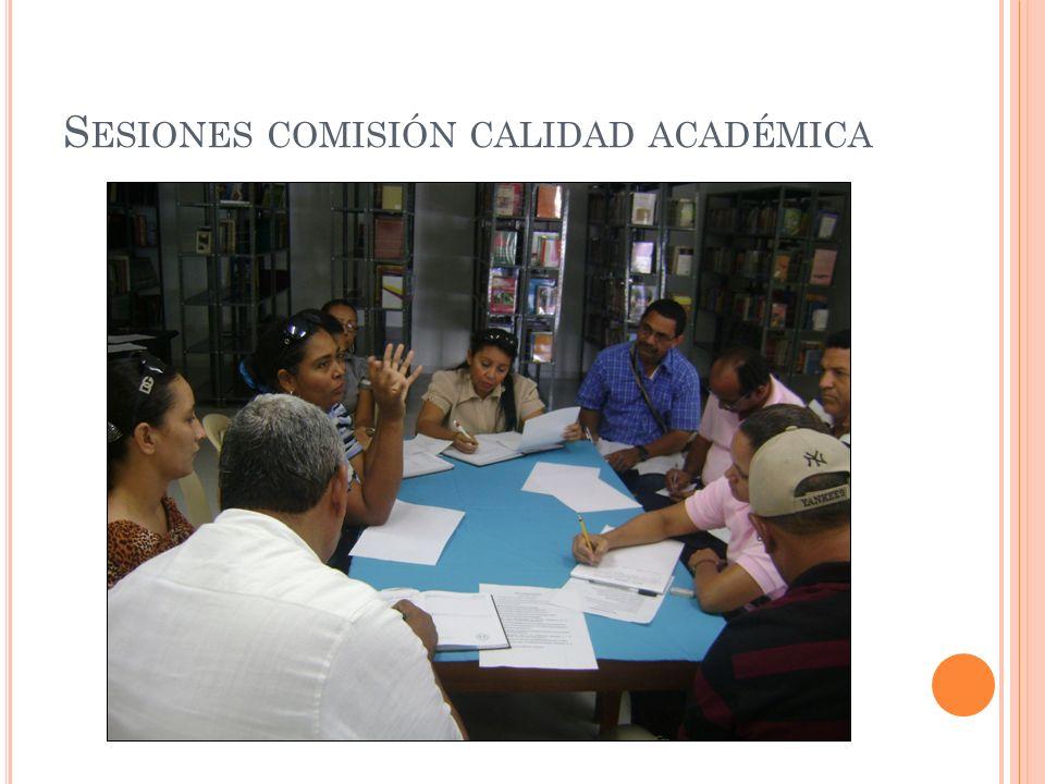 Sesiones comisión calidad académica