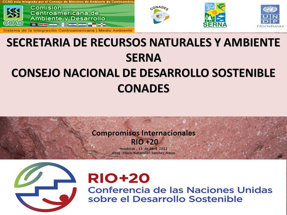 Compromisos Internacionales Abog :Edwin Natanahel Sanchez Navas