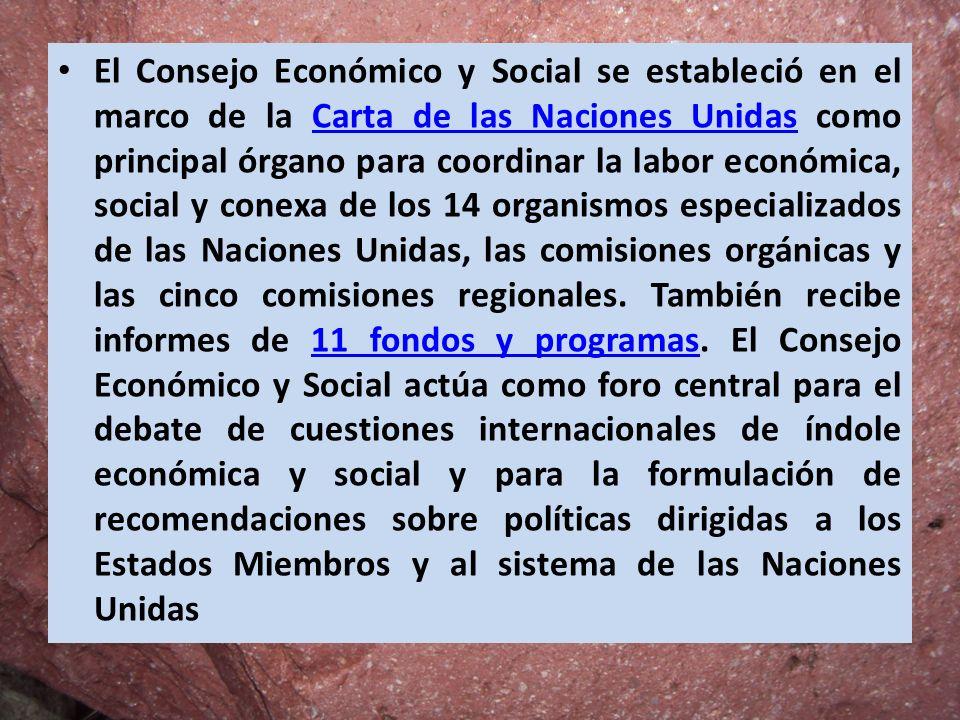 El Consejo Económico y Social se estableció en el marco de la Carta de las Naciones Unidas como principal órgano para coordinar la labor económica, social y conexa de los 14 organismos especializados de las Naciones Unidas, las comisiones orgánicas y las cinco comisiones regionales.