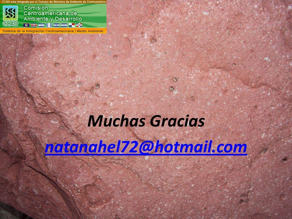 Muchas Gracias natanahel72@hotmail.com