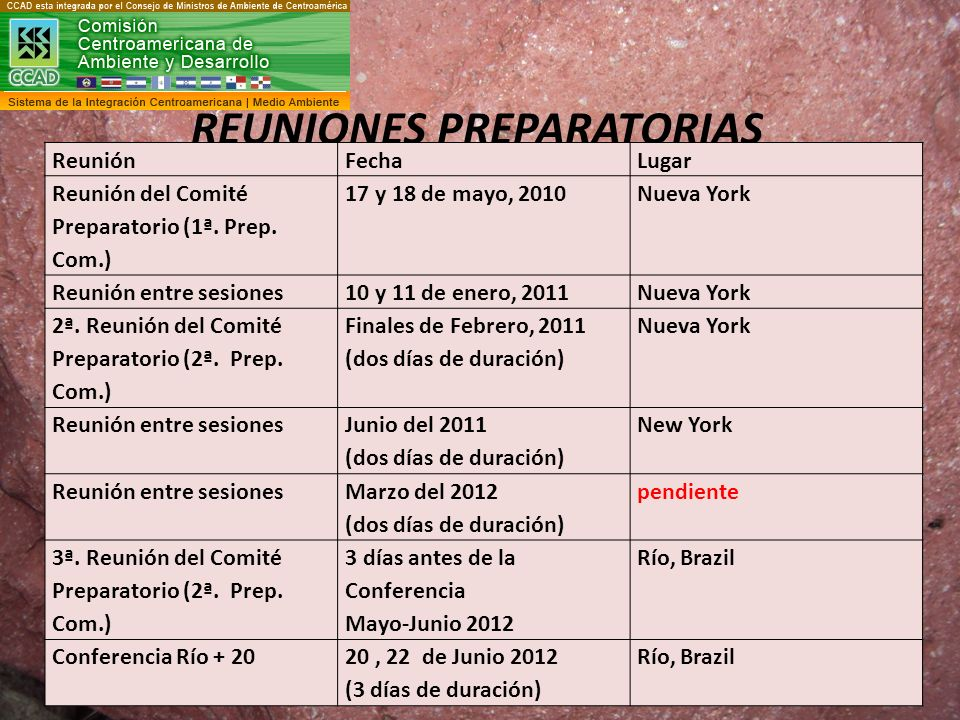 REUNIONES PREPARATORIAS
