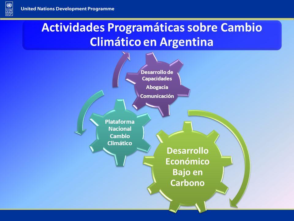 Actividades Programáticas sobre Cambio Climático en Argentina
