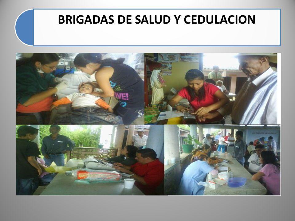 BRIGADAS DE SALUD Y CEDULACION