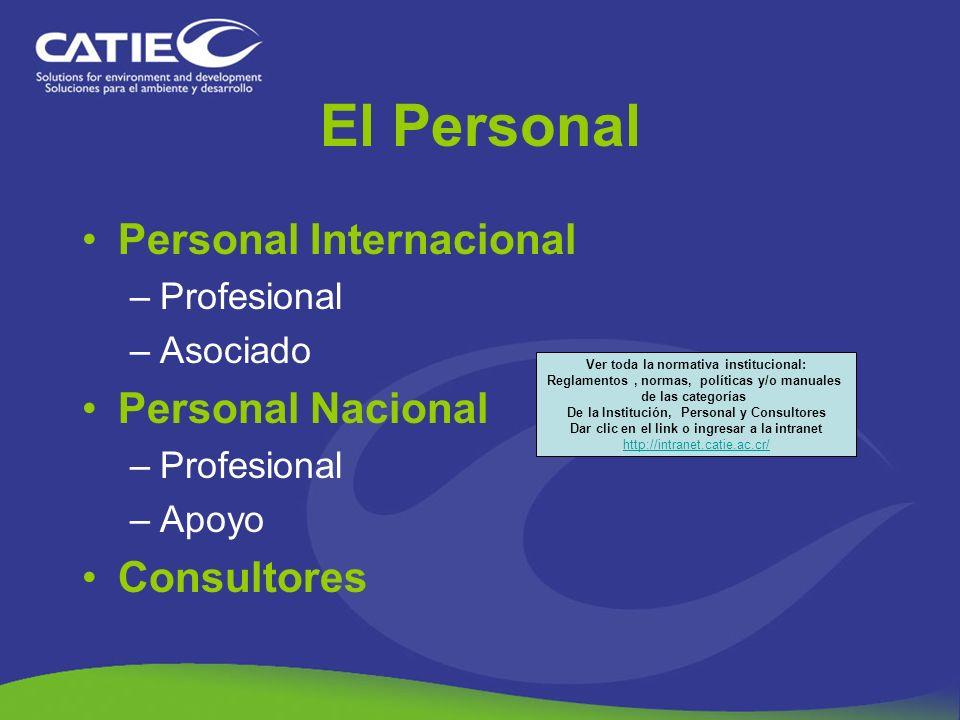 El Personal Personal Internacional Personal Nacional Consultores