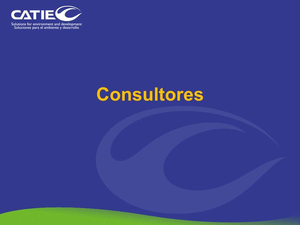 Consultores