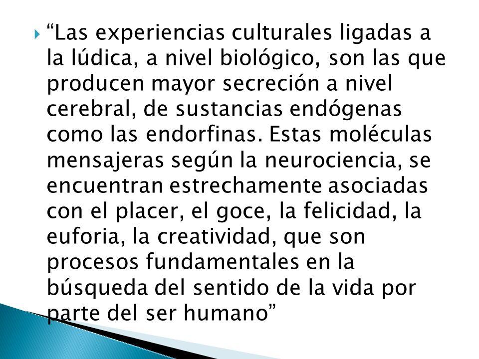 Las experiencias culturales ligadas a la lúdica, a nivel biológico, son las que producen mayor secreción a nivel cerebral, de sustancias endógenas como las endorfinas.