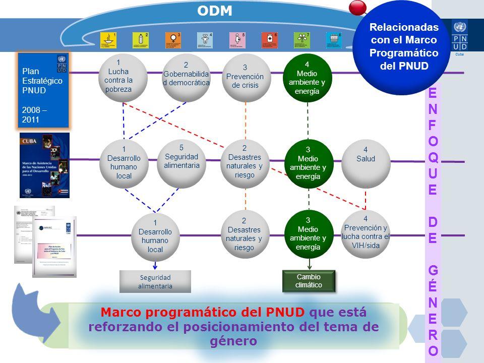 Relacionadas con el Marco Programático del PNUD